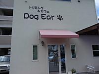 Dogear01